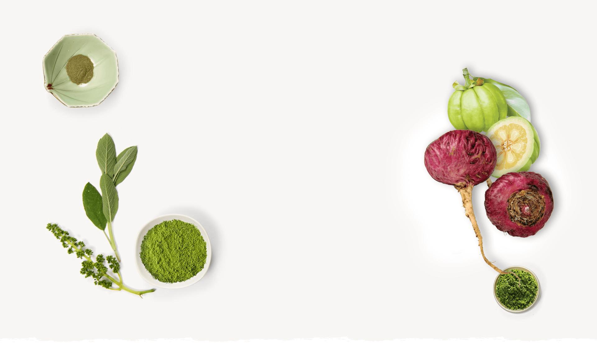 peruanska maka zdravo bilje